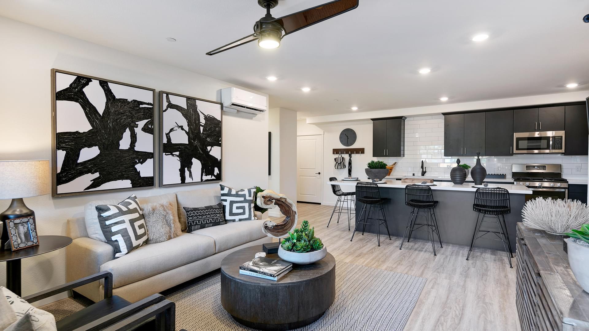 Residence 2 Living Room & Kitchen