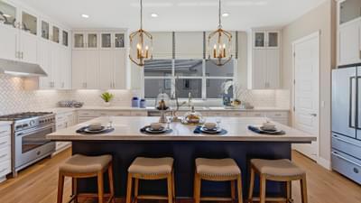 Residence 1A Kitchen