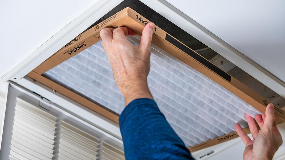 8 Easy Ways to Boost Air Quality in Your Home