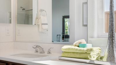 Residence 5 - Owner's Bath