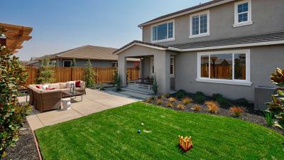 Residence 6 - Backyard