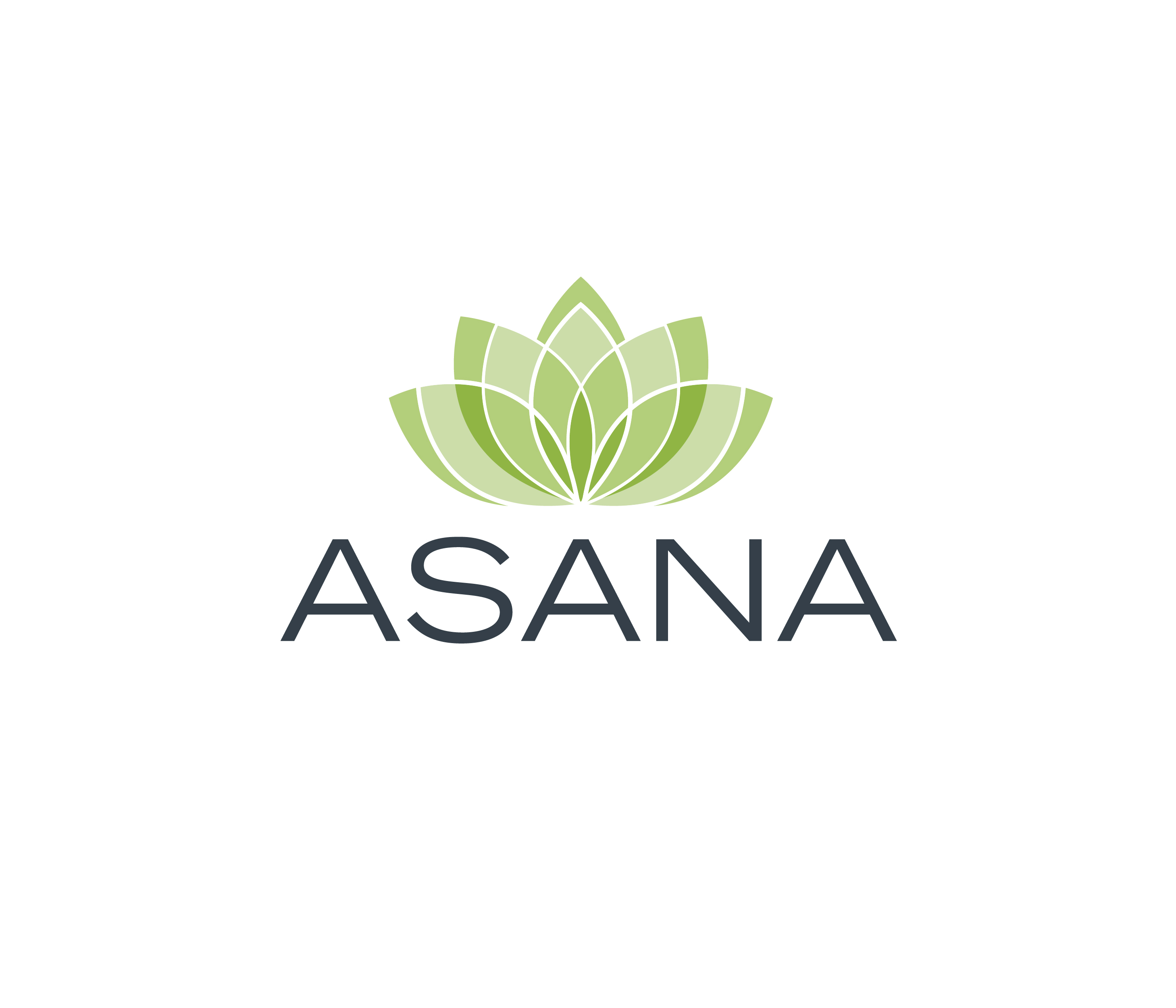 Asana New Homes in San Jose, CA